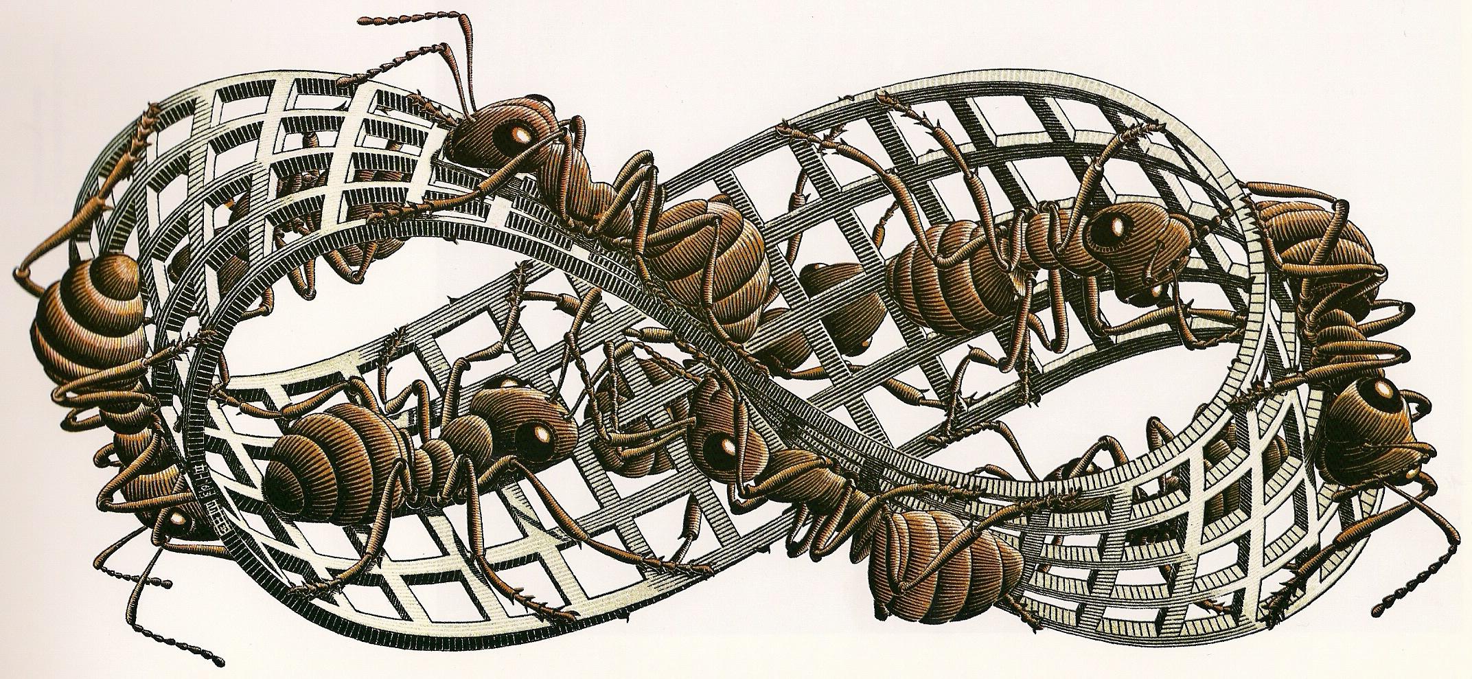 Cinta de Moebius dibujada por Escher